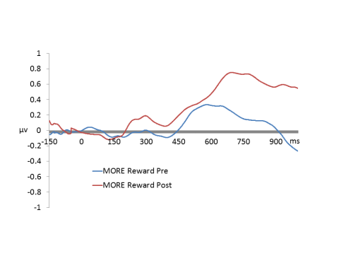 MORE EEG Reward